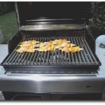Fischspiesse Weber Grill